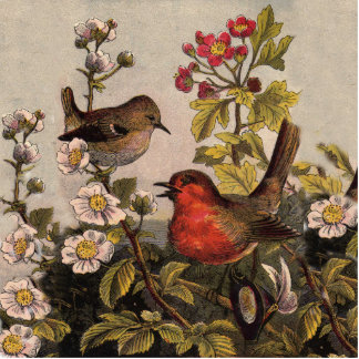 Vintage Robins for Bird Lovers Cutout