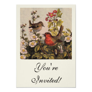 Vintage Robins for Bird Lovers Invites