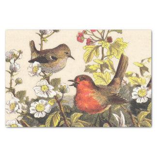 """Vintage Robins Spring Birds 10"""" X 15"""" Tissue Paper"""