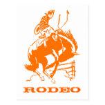 VIntage Rodeo Postcard