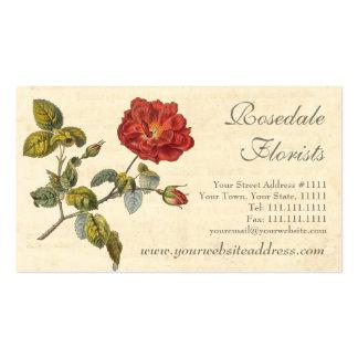 Vintage rojo hermoso subió pasado de moda tarjetas de visita