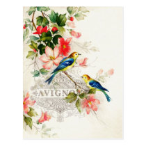 Vintage Romantic French Birds Stationary Postcard