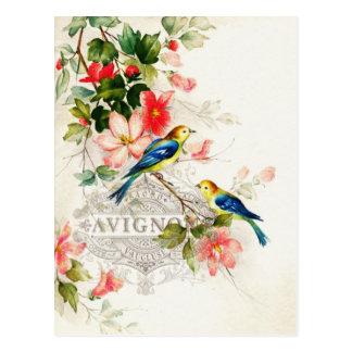 Vintage Romantic French Birds Stationary Postcard