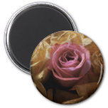 Vintage Romantic One of a Kind Love, A Single Rose 2 Inch Round Magnet