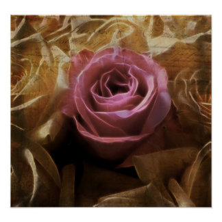Vintage Romantic One of a Kind Love, A Single Rose Poster