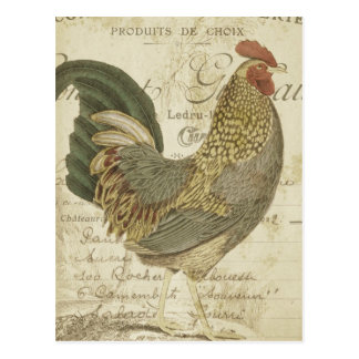 Vintage Rooster Brown Feathers French Ephemera Postcard