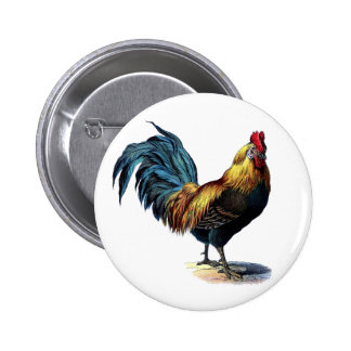 Vintage Rooster Button