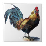 """Vintage Rooster Ceramic Tile<br><div class=""""desc"""">This beautiful Vintage Rooster is great just the way it is or you can customize with your own text to make it a personalized gift.</div>"""