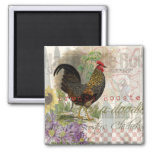 Vintage Rooster French Collage 2 Inch Square Magnet