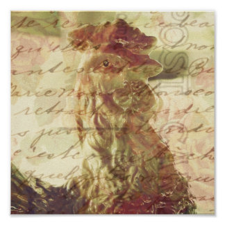 Vintage Rooster With Texture Square Crop Posters