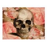 Vintage Rosa Skull Collage Postcard