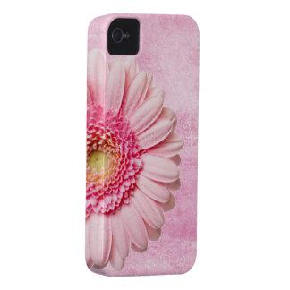 Vintage rosado hermoso de la margarita del Gerbera iPhone 4 Case-Mate Protector