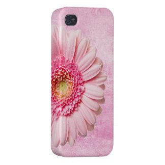 Vintage rosado hermoso de la margarita del Gerbera iPhone 4 Protector