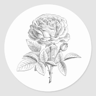 Vintage rose black and white floral sticker