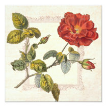 Vintage Rose Botanical Birthday Garden Party Card