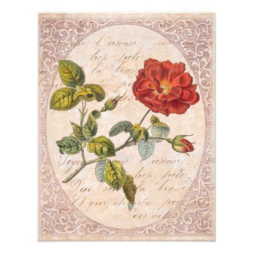 Vintage Rose Botanical Birthday Garden Party Custom