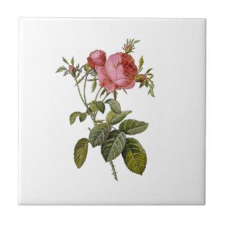 Vintage Rose Flower Art Tile Trivet Coaster