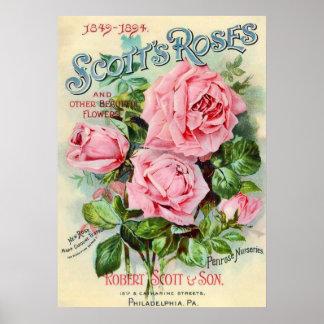 Vintage Rose Flower Catalog Cover Illustration Poster