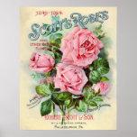 Vintage Rose Flower Catalog Cover Illustration Posters