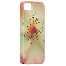 Vintage Rose iphone 5s Cases