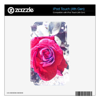 Vintage Rose iPod Touch 4G Skin
