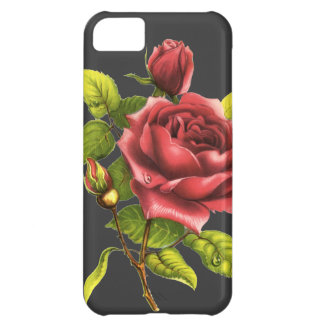 Vintage Rose on gray Case For iPhone 5C