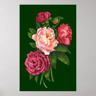 Vintage Rose Pink Peony Garden Flower Print