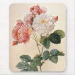 Vintage  Rose  Watercolor Mousepad