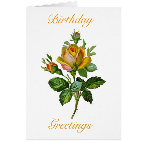 vintage roses birthday card