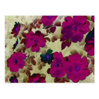 Vintage Roses Hips Postcard