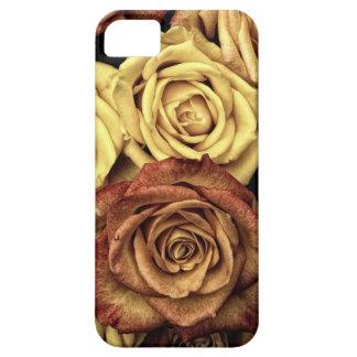 vintage roses iPhone SE/5/5s case