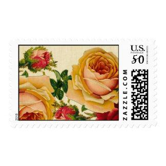 Vintage Roses on Parchment Postage