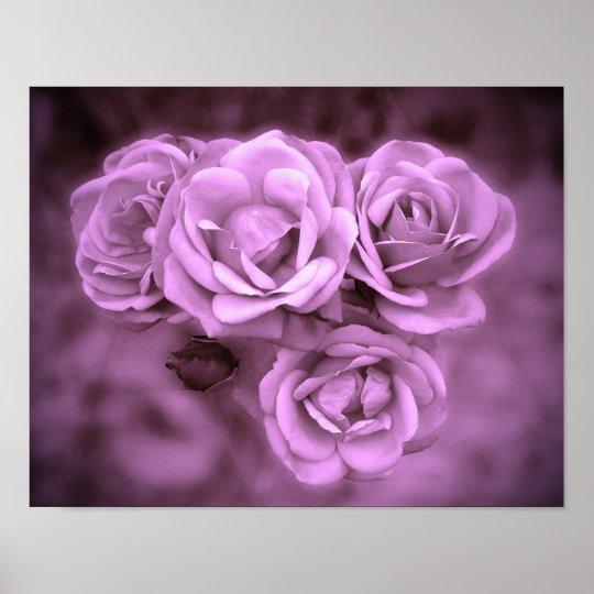 Vintage Roses Purple Poster