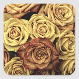 Vintage Roses Square Sticker