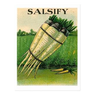 vintage salsify seed packet postcard