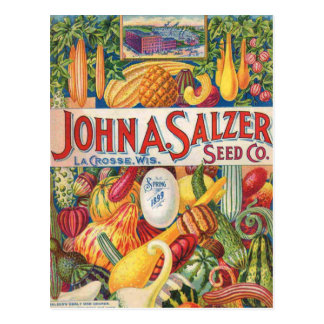 Vintage Salzer Seed Catalog Vegetables Postcard