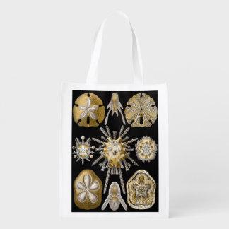 Vintage Sand Dollars Sea Urchins by Ernst Haeckel Grocery Bag