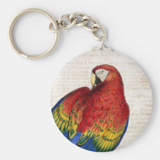 Vintage Scarlet Macaw Art Keychain