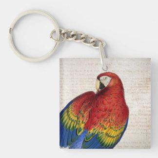 Vintage Scarlet Macaw Art Key Chain