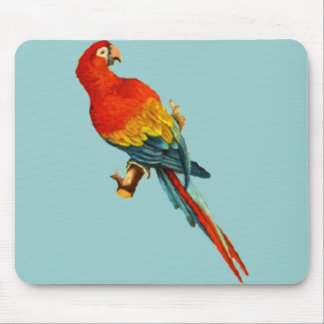 Vintage *Scarlet Macaw* Parrot Desing Mouse Pad