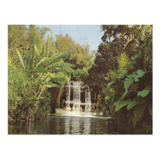 Vintage Schweitzer Falls Postcards