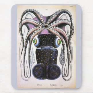 Vintage Science Biology, Giant Octopus or Squid Mouse Pad