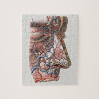 Vintage Science Human Anatomy, Face with Nose Jigsaw Puzzle