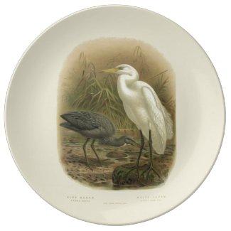 Vintage Science NZ Birds - NZ Herons Dinner Plate