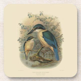 Vintage Science NZ Birds - NZ Kingfisher Beverage Coaster