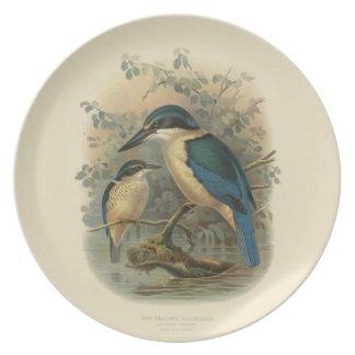 Vintage Science NZ Birds - NZ Kingfisher Melamine Plate