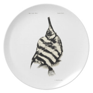 Vintage Science NZ Fish - Bellows Fish Dinner Plate