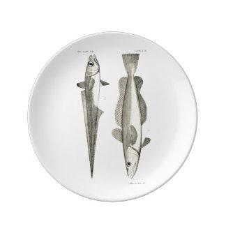 Vintage Science NZ Fish - Hoki Dinner Plate
