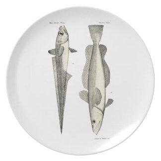 Vintage Science NZ Fish - Hoki Melamine Plate