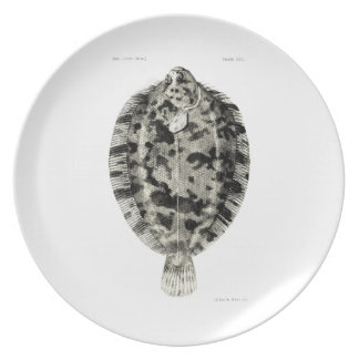 Vintage Science NZ Fish - Lemon Sole Dinner Plate